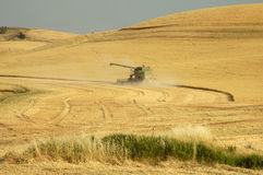 Wheat harvest 1. A combine harvesting the wheat crops in the rolling hills of the Palouse area of southeastern Washington state, summer 2006 Stock Photos