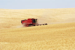 Wheat harvest 18. A combine harvesting the wheat crops in the rolling hills of the Palouse area of southeastern Washington state, summer 2006 Stock Photography