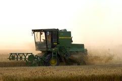 Wheat harvest Stock Image