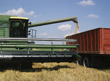 Free Wheat Harvest Royalty Free Stock Photos - 2652508