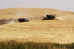 Wheat harvest 6. Combines harvesting the wheat crops in the rolling hills of the Palouse area of southeastern Washington state, summer 2006 Royalty Free Stock Photos