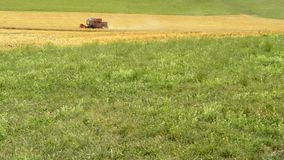 Wheat harvest with harvester-trasher. In Germany stock footage