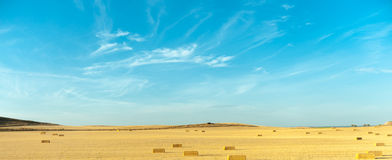 Wheat harvest in Spain Royalty Free Stock Images