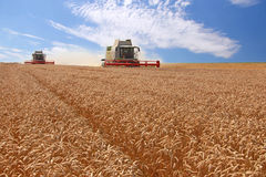Wheat harvester in action Stock Photos