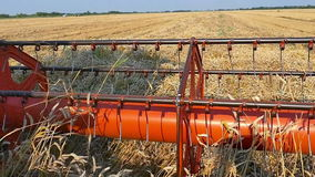 Wheat harvester in the work stock video footage