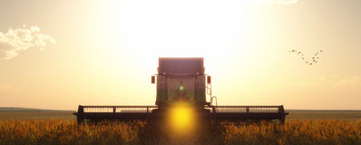 Wheat harvester. Working in wheat field Royalty Free Stock Images