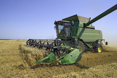 Wheat harvesting Royalty Free Stock Photography