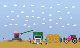 Wheat harvesting, combine harvester, tractor. Combine harvester gathers the wheat in the field and automatically loads it in the truck. Farmers gathering the hay Royalty Free Stock Images