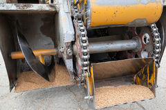 Wheat harvesting machine Stock Image