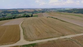 Wheat harvesting shearers. View from above. stock video