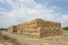 Wheat haystack Royalty Free Stock Photography
