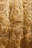 Wheat Haystacks background. Royalty Free Stock Photos