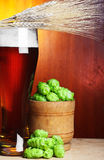 Wheat, hop and beer Stock Photos