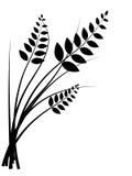 Wheat icon. Wheat black silhouette on white background vector illustration