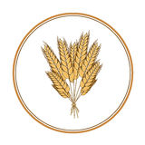 Wheat icon design element. Vector. Isolated illustration. Royalty Free Stock Photos
