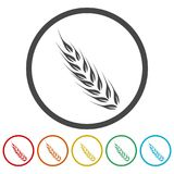 Wheat icon, Wheat ears icon, 6 Colors Included. Simple vector icons set Stock Image