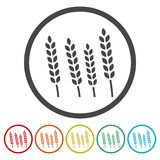 Wheat icon, wheat ears icon, 6 colors included. Simple vector icons set Royalty Free Stock Photos