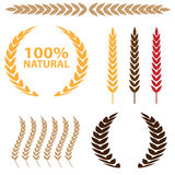 Wheat Icon Set Stock Photography