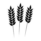 Wheat icon. Vector illustration Royalty Free Stock Image