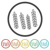 Wheat icon, wheat ears icon, 6 colors included. Simple icons set Stock Photography