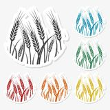 Wheat icon, Wheat ears icon, 6 Colors Included. Simple  icons set Stock Photos