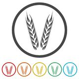 Wheat icon, Wheat ears icon, 6 Colors Included. Simple vector icons set Royalty Free Stock Images