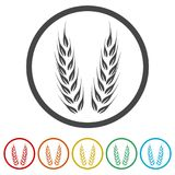 Wheat icon, Wheat ears icon, 6 Colors Included. Simple vector icons set Stock Photography