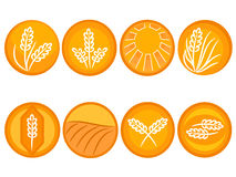 Wheat icons Stock Images