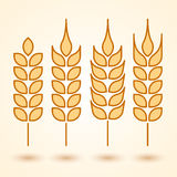 Wheat icons set Royalty Free Stock Images