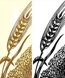 Wheat illustration Royalty Free Stock Photos