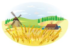 Wheat landscape Royalty Free Stock Photos