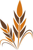 Wheat logo Stock Photo