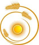 Wheat logo. Illustration art of a wheat logo with isolated background stock illustration