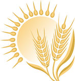 Wheat logo Royalty Free Stock Images