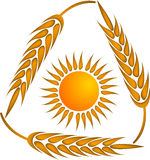 Wheat logo Stock Photos