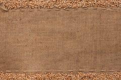Wheat lying on sackcloth Stock Photography
