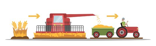 Wheat manufacture process royalty free illustration