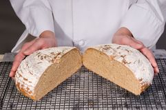 Wheat Multi Grain Bread Royalty Free Stock Photography