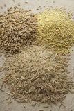 Wheat And Oat Grains With Brown Rice Royalty Free Stock Image