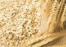 Wheat and oats on the burlap Royalty Free Stock Images