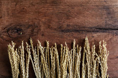Wheat on old wood background Royalty Free Stock Images