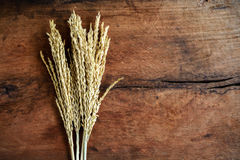 Wheat on old wood background Stock Images