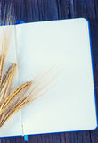 Wheat and paper Royalty Free Stock Photography