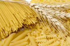 Wheat and pasta. Raw pasta collections, plate set Stock Image