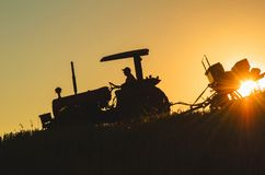 Wheat planting, agriculture, man of the field royalty free stock photography