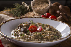Wheat risotto with meat. Gourmet food Royalty Free Stock Images