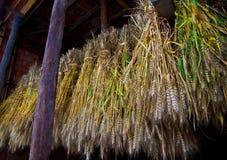 Wheat on rustic civilian granary,china Stock Photos