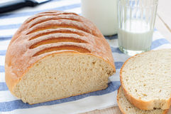 Wheat and Rye Bread with Oats Royalty Free Stock Photos