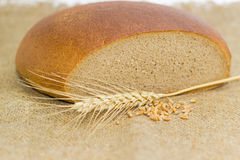 Wheat rye bread, wheat spike and handful of wheat grains Stock Photos