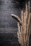 Wheat and rye ears on vintage wooden board Royalty Free Stock Photo